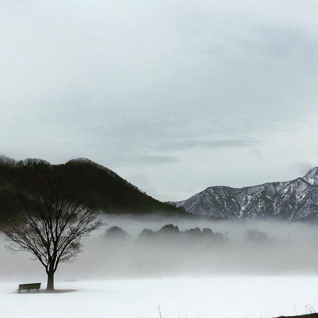 いつもと違う、日野川から村国山、日野山。霧?