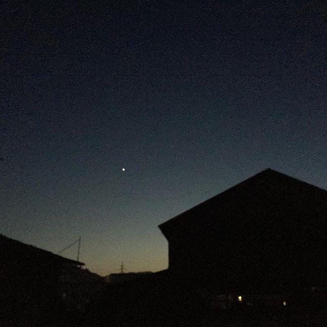 夜散歩。お星さま。