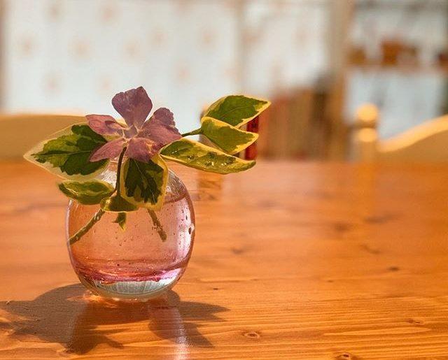 先日のイベントで、吹きガラス体験にお誘い頂き、その一輪挿しが今ほど届いた。さっそく庭の草花を。なかなか満足な出来栄え。ちょっと明るい気持ちに。