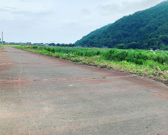 新しい散歩コース。