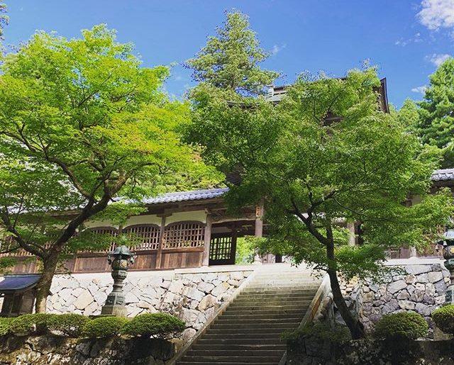 朝一に。意外に涼しい永平寺。