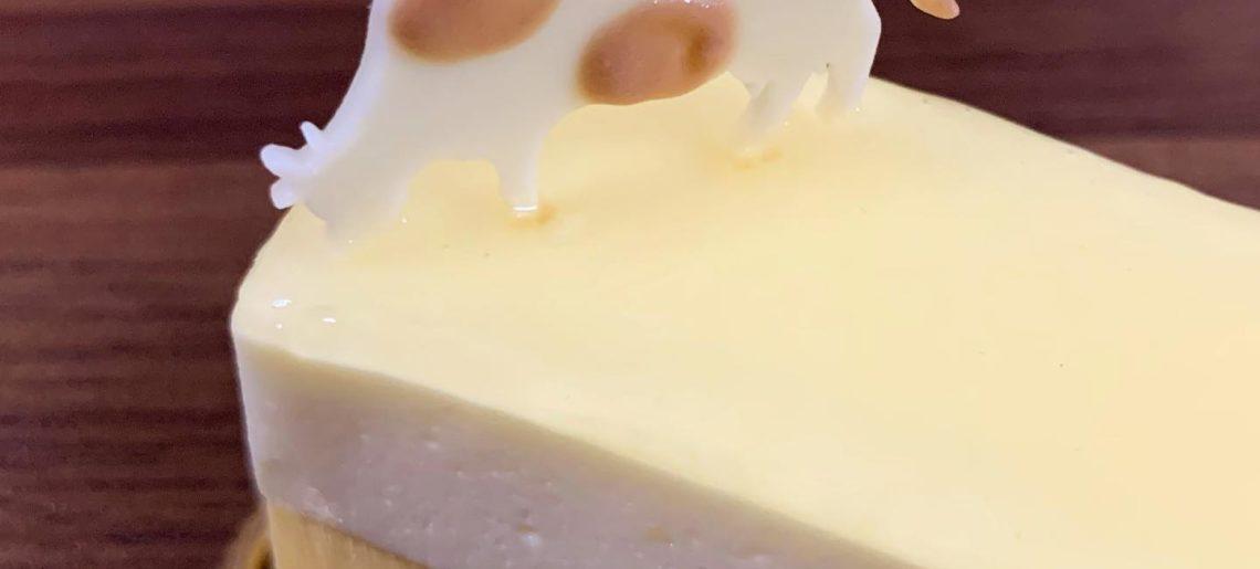 チーズケーキの隅っこに牛さんが。#ぶどうの木