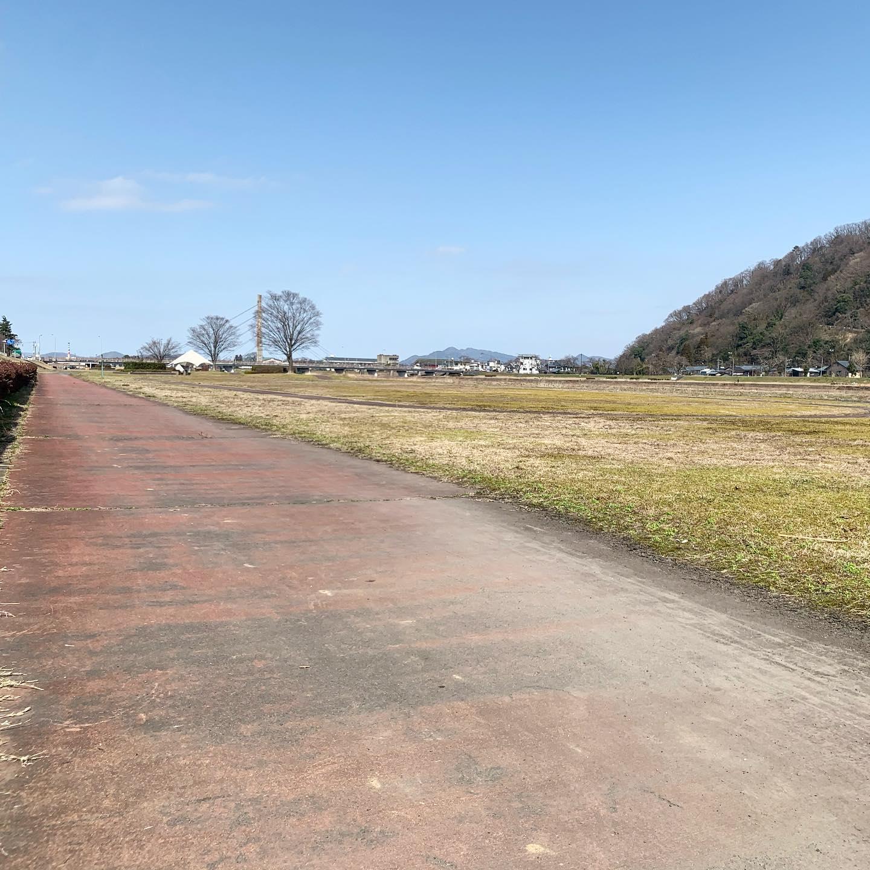 近所の河原まで、お昼休みのお散歩コース、往復15分。
