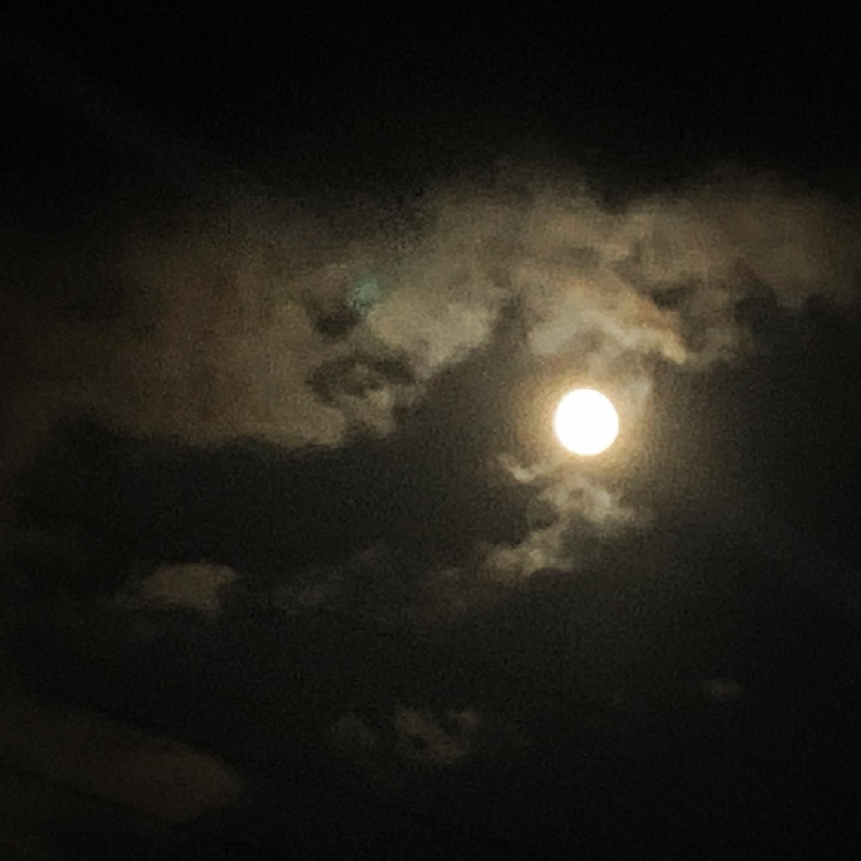 月を見ながらお散歩。ちょうど雲のあいだから顔を出してくれました。明日は中秋の名月、ハーベストムーンです